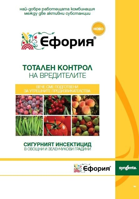 eforia brochure cover